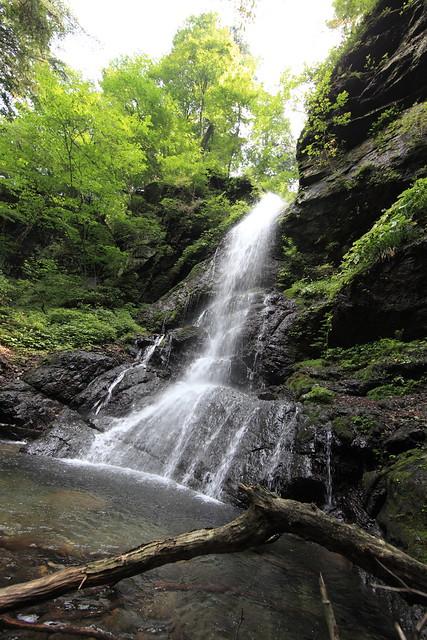 Waterfall / 留春の滝(りゅうしゅんのたき)