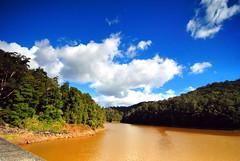 Little Nerang Dam