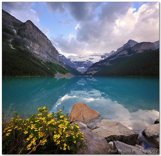 Lake Louise (AKA. The Most Photographed Bush of Flowers on the Planet)
