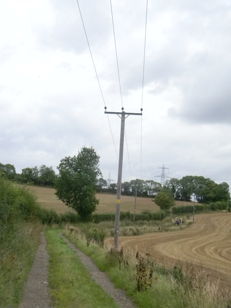 Field stripes Great Chesterford to Newport