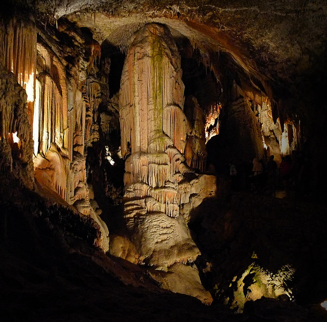 Gothic nature of Postojnska cave