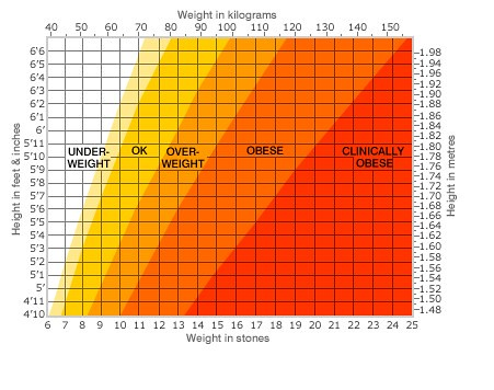 bmi index male3  bmi index male3 6025560707 8cf8540897