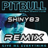 Give me everything remix