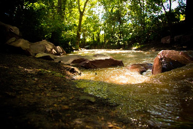 Fountain Creek  Explore Ladybugbkt's Photos On Flickr. Group Life Insurance Rates Free File Sharing. Free Car Insurance Quotes Green Light Cuisine. Best Web Server Software St Kitts University. Trifold Brochure Printing Ltl Shipping Class. Just Car Insurance Quote E Commerce Web Sites. Cypress Wealth Management Upgrade Sql Server. Junior Game Programmer Jobs Apple Mac Rumors. Automatic File Transfer Concord Police Station