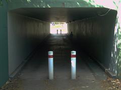DSC00116_tunnel