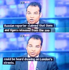 2011_08_100007 (t3) - in the riot, lions were drawing on London streets