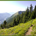 Putrid Pete's Peak & Mt Defiance Loop, 8 20 11