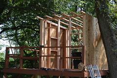 wood, tree, architecture, tree house,