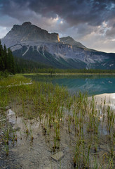 Emerald Lake at Sunrise, Yoho National Park, British Columbia