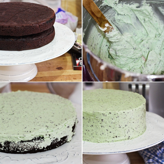 Mint Chocolate Chip Cake | Flickr - Photo Sharing!