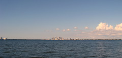 Tampa - Ballast Point Park - Downtown Tampa Skyline Across Hillsborough Bay (3)