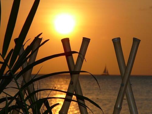 sunset beach sailboat aruba