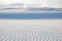 wetland(0.0), arctic ocean(0.0), tundra(0.0), plain(0.0), mudflat(0.0), plateau(0.0), sand(1.0), aeolian landform(1.0), natural environment(1.0), dune(1.0), landscape(1.0),