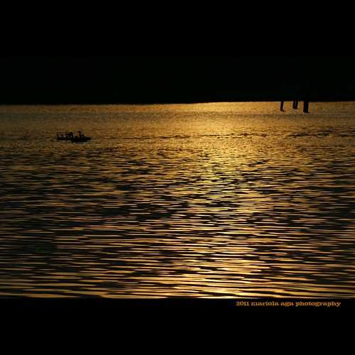 park sunset summer nature water swimming square golden evening pond quote ducks surface schaumburg ripples tones thegalaxy bussewoodsforestpreserve mygearandme mygearandmepremium mygearandmebronze mygearandmesilver mygearandmegold mygearandmeplatinum mygearandmediamond