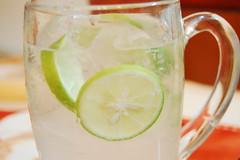 soft drink(0.0), food(0.0), caipiroska(1.0), citrus(1.0), non-alcoholic beverage(1.0), lemon-lime(1.0), mojito(1.0), produce(1.0), limeade(1.0), fruit(1.0), lemonade(1.0), drink(1.0), cocktail(1.0), caipirinha(1.0), lime(1.0), alcoholic beverage(1.0),