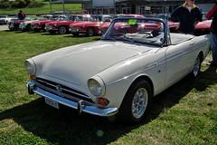 datsun roadster(0.0), automobile(1.0), vehicle(1.0), sunbeam tiger(1.0), sunbeam alpine(1.0), antique car(1.0), classic car(1.0), land vehicle(1.0), convertible(1.0), sports car(1.0),