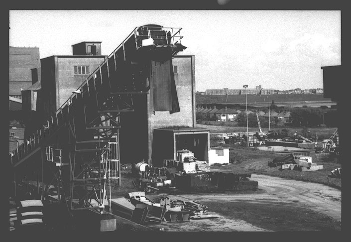 View of Westoe Colliery