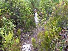 Sentier de Cuperchjata Sud depuis la piste de l'Osu : la sente de chasseurs de la 1ère partie