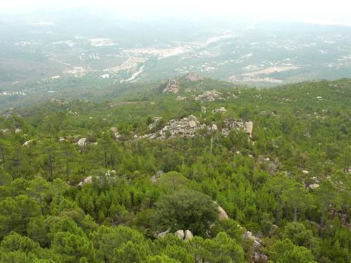 Punta di a Cuperchjata : du sommet, l'entrée de l'Osu, le rocher remarquable, les deux bois de pins et les deux crêtes traversés par notre tranchée