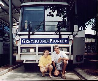 Greyhound Australia 1