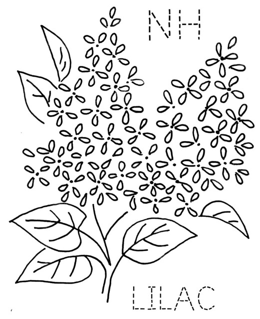 garden state parkway sign coloring pages | New Hampshire Lilac | Flickr - Photo Sharing!
