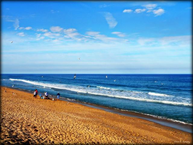 Beach goers photos 23
