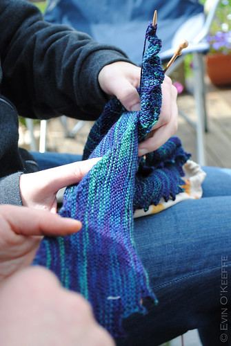 Admiring the Yarn and the Stitches