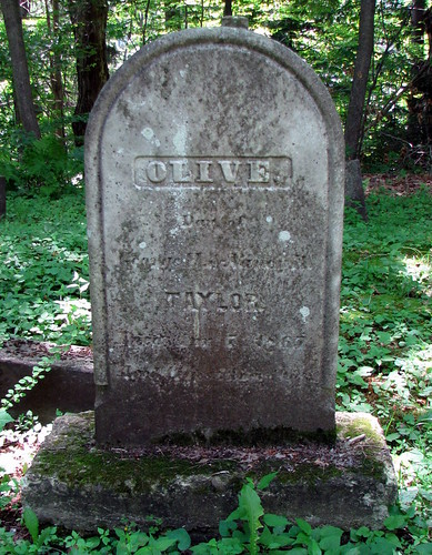 newyork taylor genealogy gravestone chemungcounty hilltopcemetery breesport