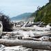 Kalaloch Beach, WA, Olympic National Park, 2011-09-01 [16-58-22] by b gallatin