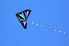 wing(0.0), toy(0.0), individual sports(1.0), sports(1.0), windsports(1.0), line(1.0), kite(1.0), sport kite(1.0),