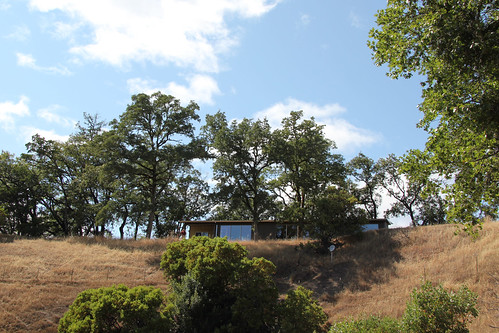 ranch dog house long sonoma valley trot sheepdung