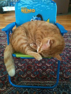 Sleepy in the chair of smallness...