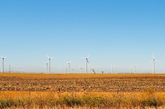 prairie, windmill, field, plain, wind, wind farm, electricity, rural area, wind turbine, grassland,