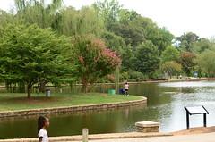 Lake shot at Freedom Park in Charlotte, NC