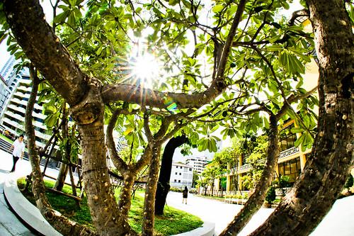 FishEye & Srinakharinwirot University