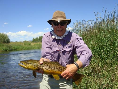 November 2011 backwater angler for Yampa river fishing report