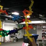 Balloon DNA