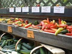 Fresh Vegetables in Rhode Island