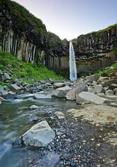 Svartifoss landscape