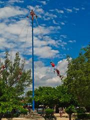 vehicle(0.0), mast(0.0), pole(1.0), tree(1.0), wind(1.0), sky(1.0),