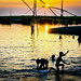 Happy Bath & Play with CRAZY RIVER JAMUNA.. by Shibu Bhattacharjee (Busy for Pro work )