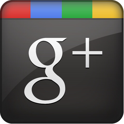Google Plus Icon - Flickr - Photo Sharing!