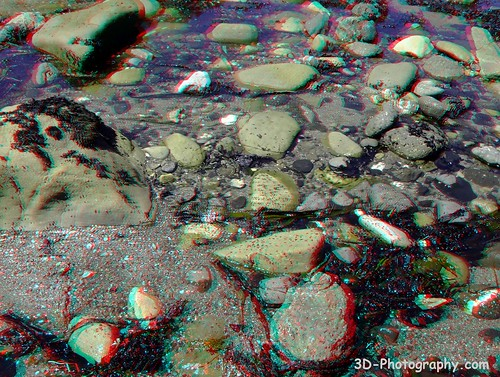 california 3d anaglyph stereo tidepools tidepool mendocinocounty chrisgrossman fujifinepixw1 iversencove