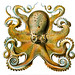 Haeckel Octopus