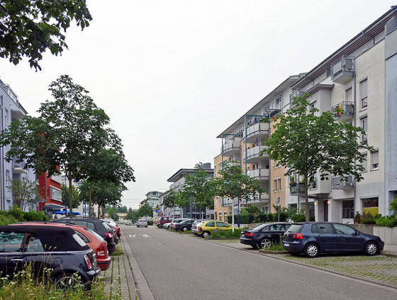 Rieselfeld, Freiburg, photo by Payton Chung, cc