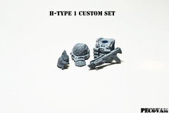 H-Type 1 Custom Set