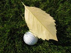 Ballyearl Golf Centre