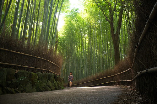 the path of bamboo, revisited #15 (near Tenryuu-ji temple, Kyoto)