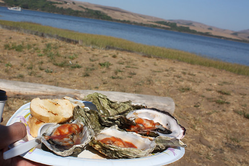Inverness Market Oysters, Tomales Bay