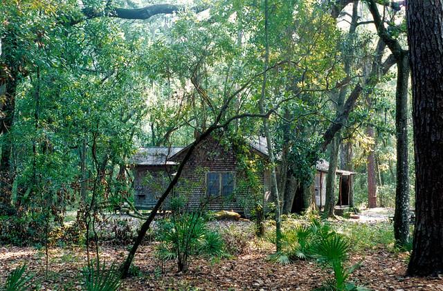 Floyd S Island Cabin Okefenokee
